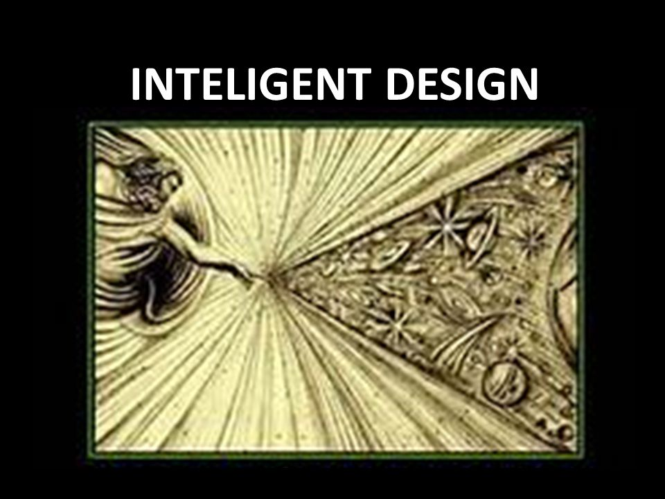 INTELIGENT DESIGN