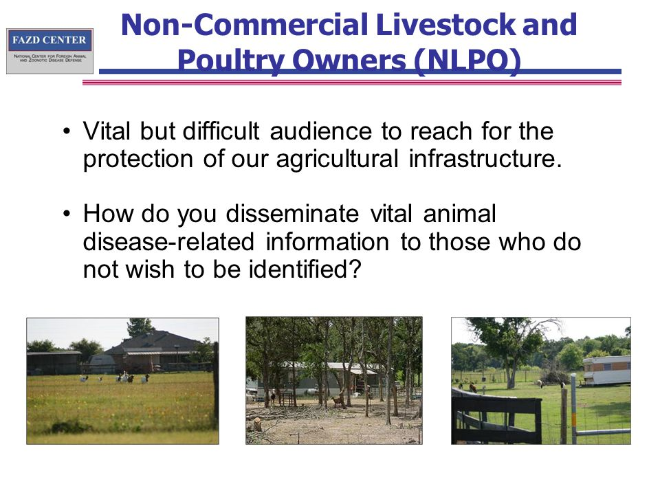 Non-Commercial Livestock and Poultry Owners (NLPO) Vital but difficult audience to reach for the protection of our agricultural infrastructure.
