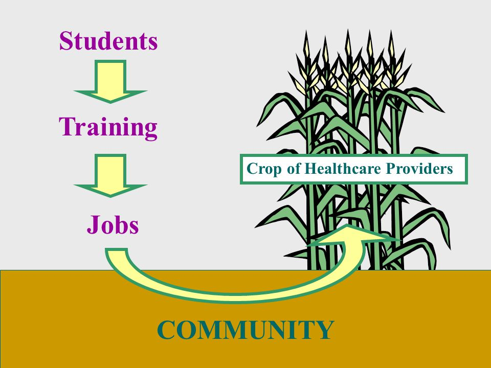 COMMUNITY Students Training Jobs Crop of Healthcare Providers