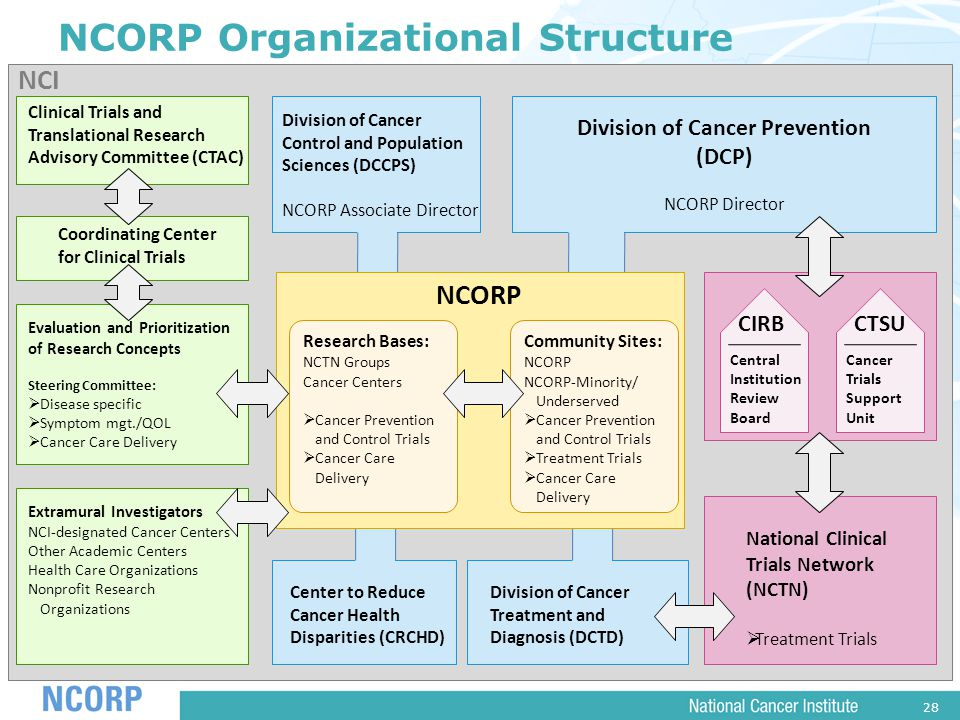 28 Division of Cancer Control and Population Sciences (DCCPS) NCORP Associate Director Center to Reduce Cancer Health Disparities (CRCHD) Division of Cancer Treatment and Diagnosis (DCTD) Division of Cancer Prevention (DCP) NCORP Director NCORP Organizational Structure NCI NCORP Research Bases: NCTN Groups Cancer Centers  Cancer Prevention and Control Trials  Cancer Care Delivery Community Sites: NCORP NCORP-Minority/ Underserved  Cancer Prevention and Control Trials  Treatment Trials  Cancer Care Delivery Extramural Investigators NCI-designated Cancer Centers Other Academic Centers Health Care Organizations Nonprofit Research Organizations Clinical Trials and Translational Research Advisory Committee (CTAC) Coordinating Center for Clinical Trials Evaluation and Prioritization of Research Concepts Steering Committee:  Disease specific  Symptom mgt./QOL  Cancer Care Delivery Central Institution Review Board CIRB Cancer Trials Support Unit CTSU National Clinical Trials Network (NCTN)  Treatment Trials