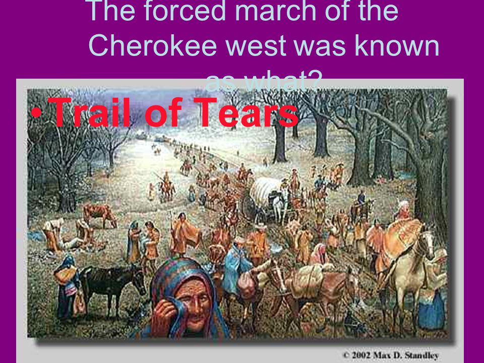 The forced march of the Cherokee west was known as what Trail of Tears