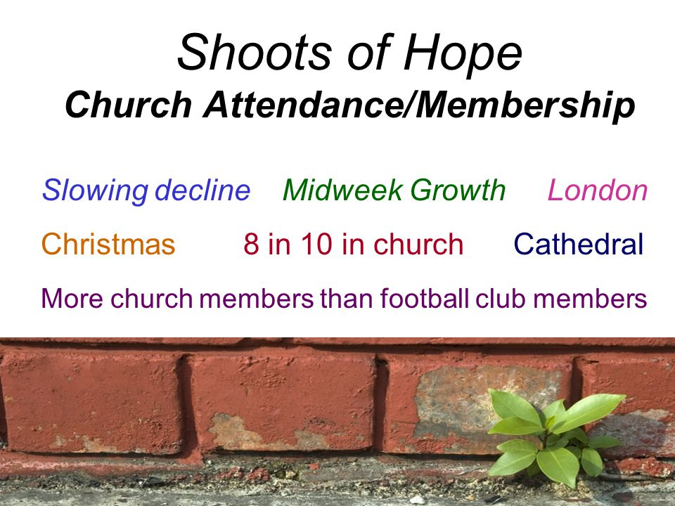 Shoots of Hope Church Attendance/Membership Slowing decline Midweek Growth London Christmas8 in 10 in church Cathedral More church members than football club members