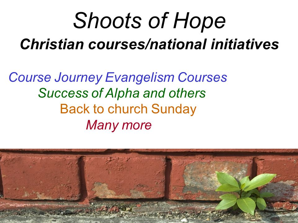 Shoots of Hope Christian courses/national initiatives Course Journey Evangelism Courses Success of Alpha and others Back to church Sunday Many more
