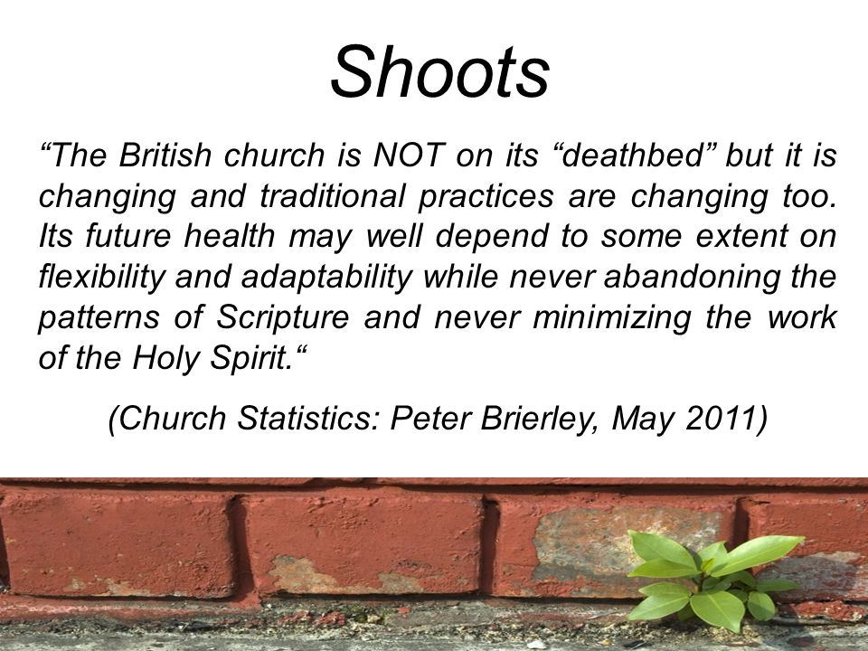 Shoots The British church is NOT on its deathbed but it is changing and traditional practices are changing too.