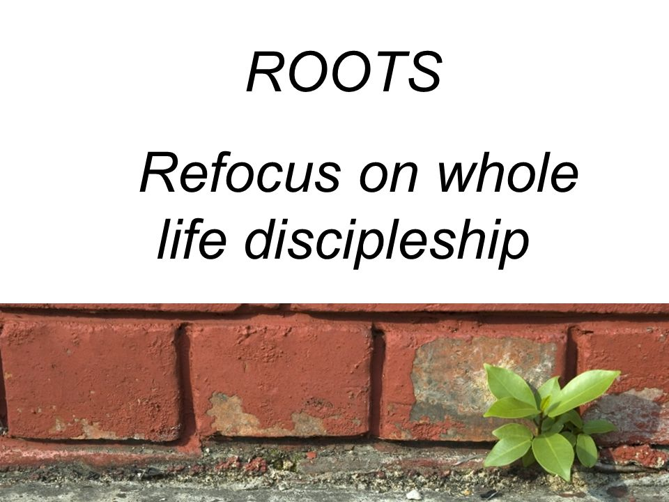 ROOTS Refocus on whole life discipleship