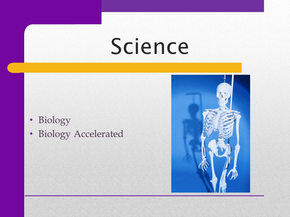 Science Biology Biology Accelerated