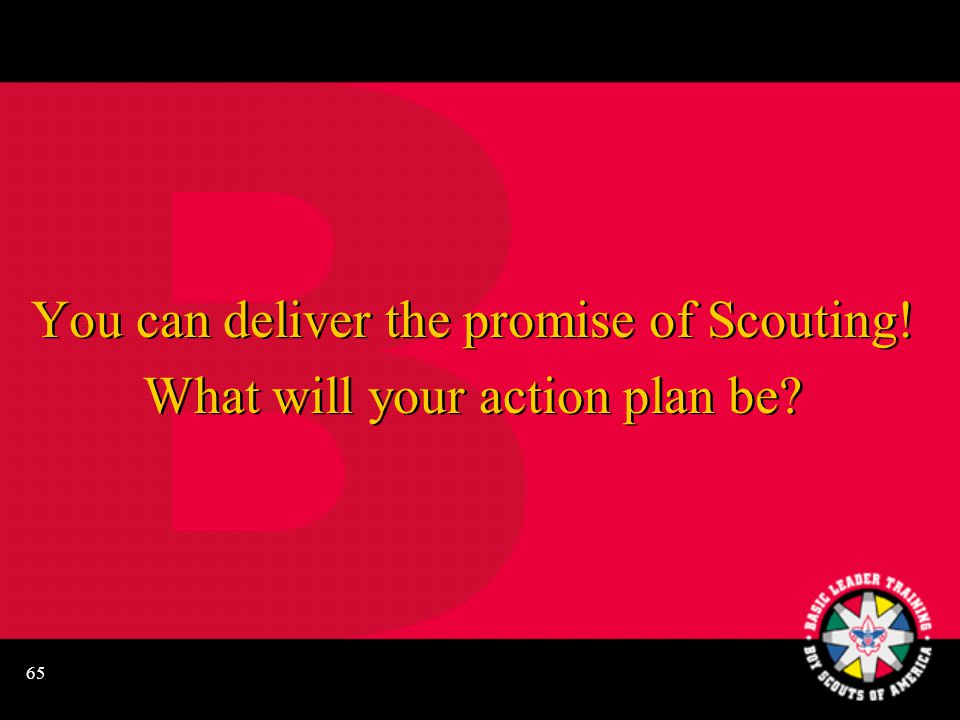 65 You can deliver the promise of Scouting. What will your action plan be.