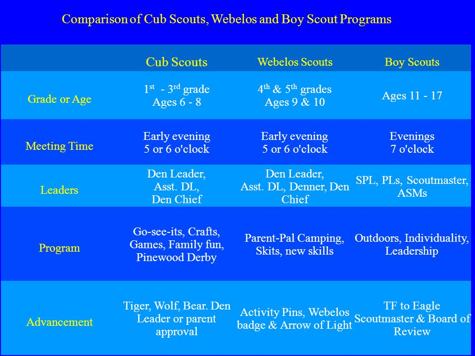Den Chief Training  Cub Scout Promise I promise to do my