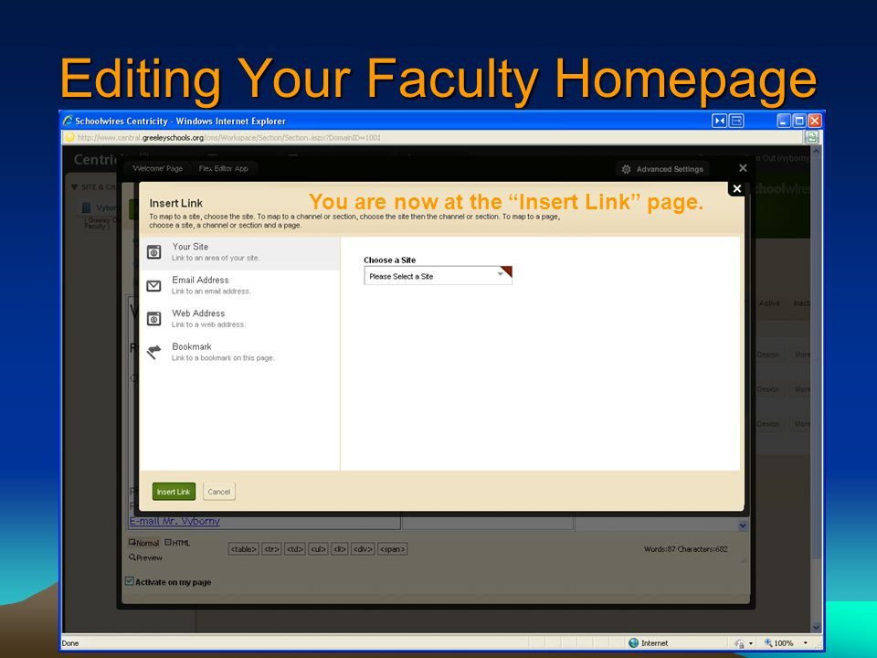 Editing Your Faculty Homepage You are now at the Insert Link page.