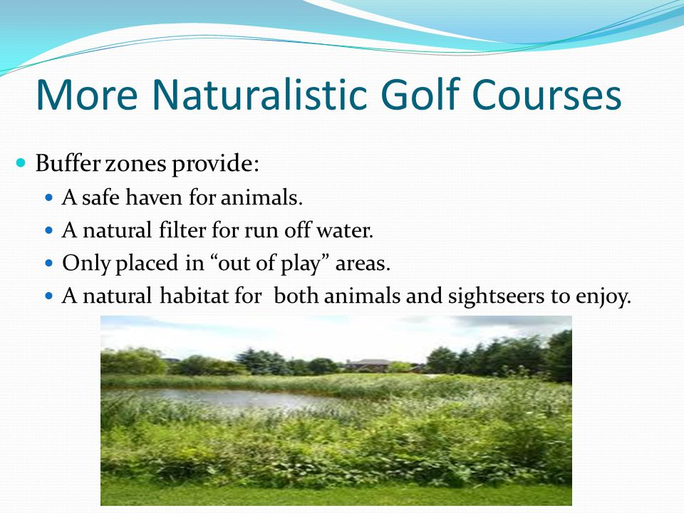 More Naturalistic Golf Courses Buffer zones provide: A safe haven for animals.