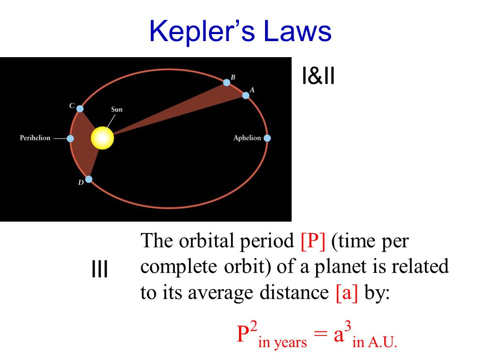 Kepler's Laws I&II The orbital period [P] (time per complete orbit) of a planet is related to its average distance [a] by: P 2 in years = a 3 in A.U.