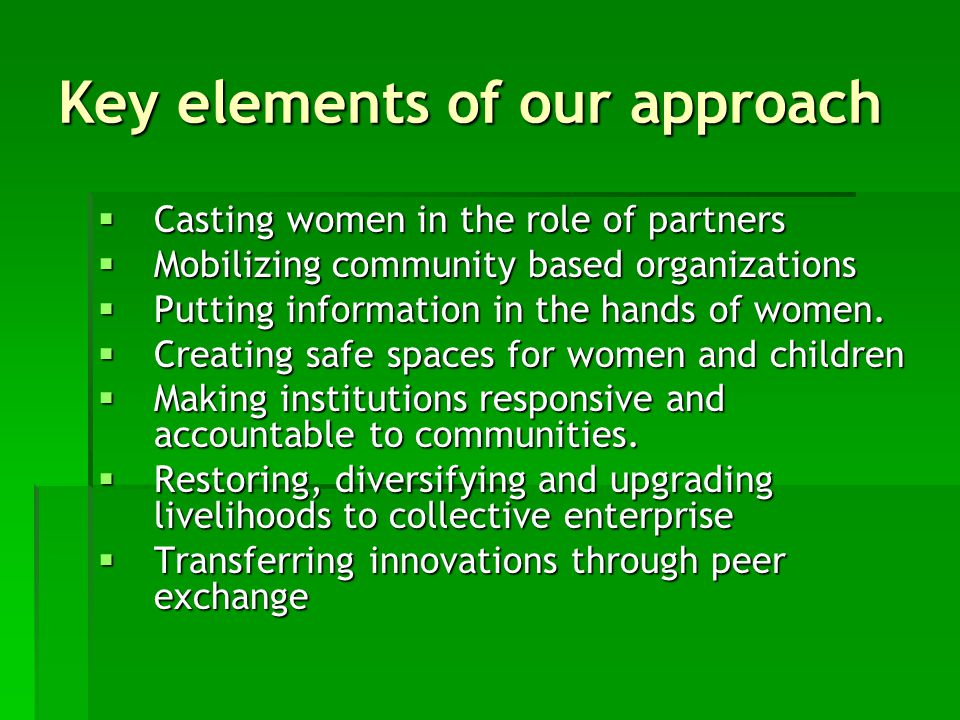 Key elements of our approach  Casting women in the role of partners  Mobilizing community based organizations  Putting information in the hands of women.
