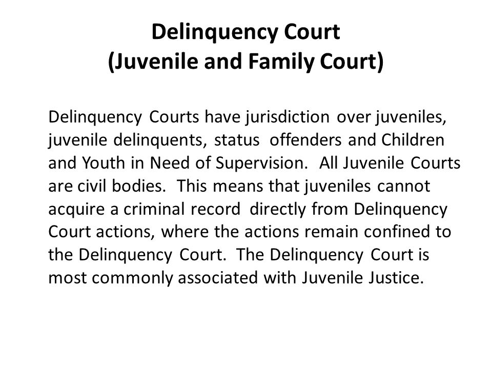 Delinquency Court (Juvenile and Family Court) Delinquency Courts have jurisdiction over juveniles, juvenile delinquents, status offenders and Children and Youth in Need of Supervision.
