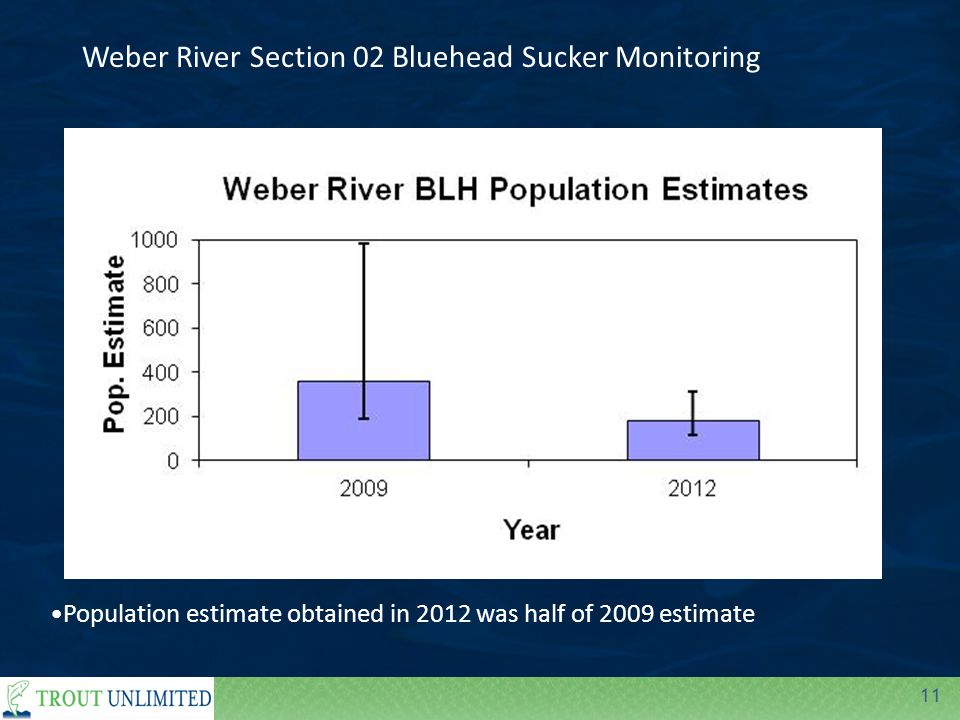 11 Population estimate obtained in 2012 was half of 2009 estimate Weber River Section 02 Bluehead Sucker Monitoring