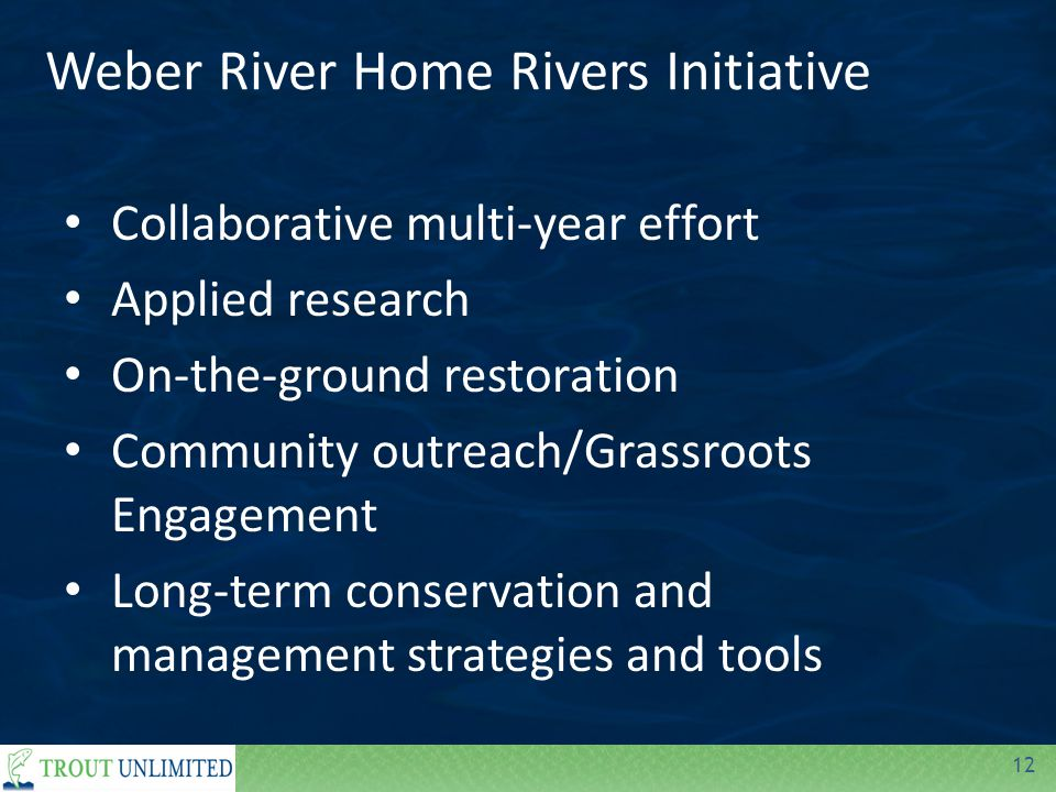 12 Weber River Home Rivers Initiative Collaborative multi-year effort Applied research On-the-ground restoration Community outreach/Grassroots Engagement Long-term conservation and management strategies and tools