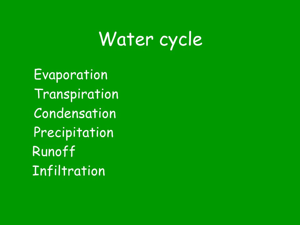 Cycles in Nature Water Carbon Nitrogen Phosphorus