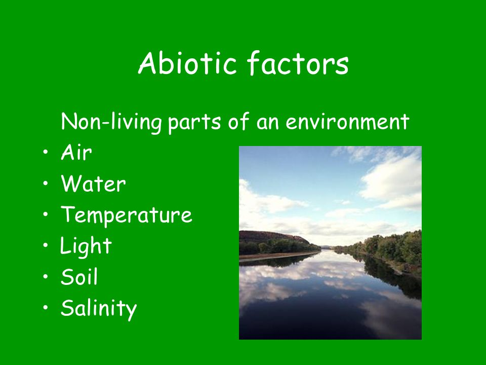 Biotic factors Living, or once living, organisms in an environment