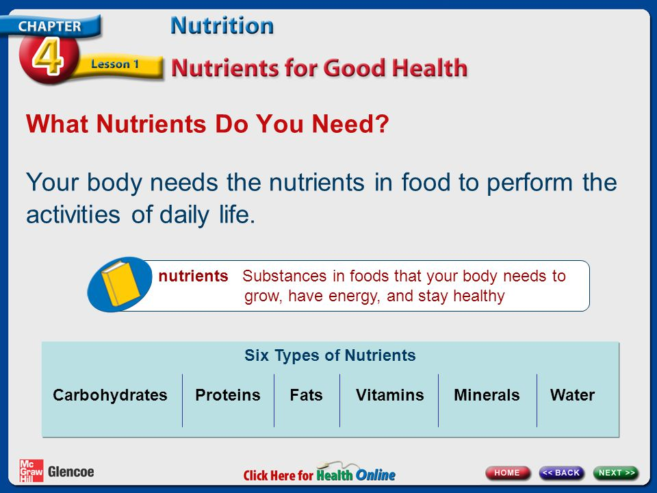 What Nutrients Do You Need.