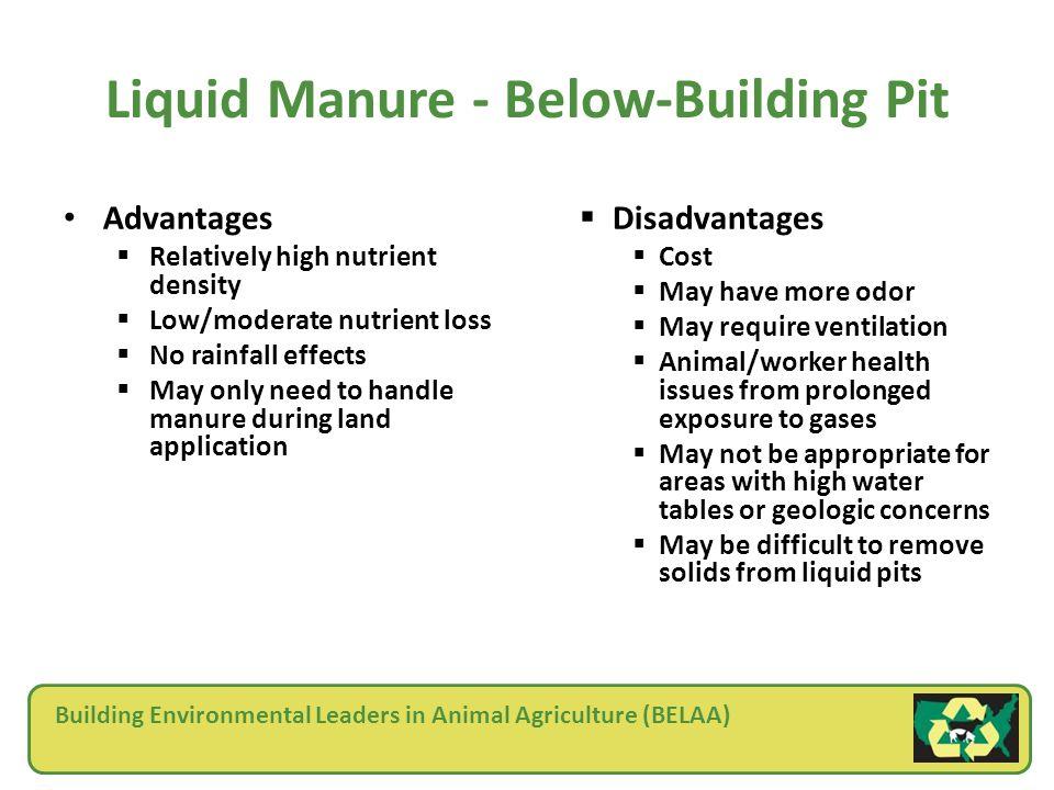 Building Environmental Leaders in Animal Agriculture (BELAA