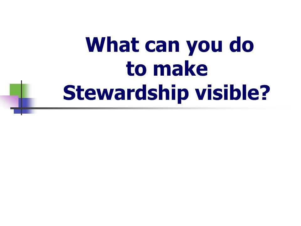 What can you do to make Stewardship visible
