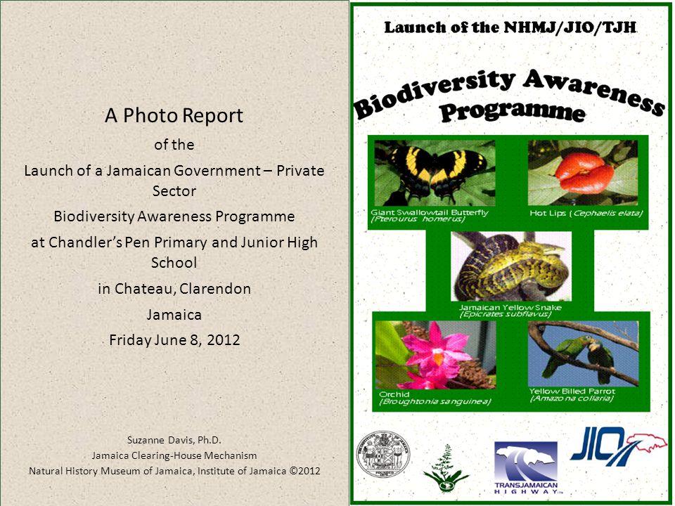 Jio jamaica
