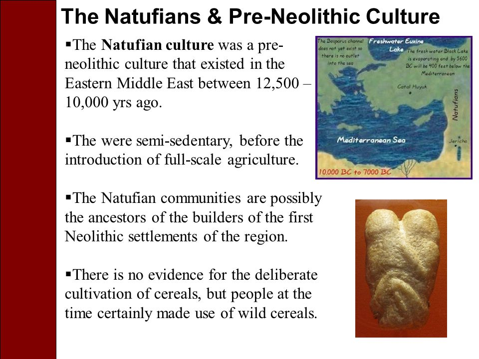 The Natufians & Pre-Neolithic Culture  The Natufian culture was a pre- neolithic culture that existed in the Eastern Middle East between 12,500 – 10,000 yrs ago.