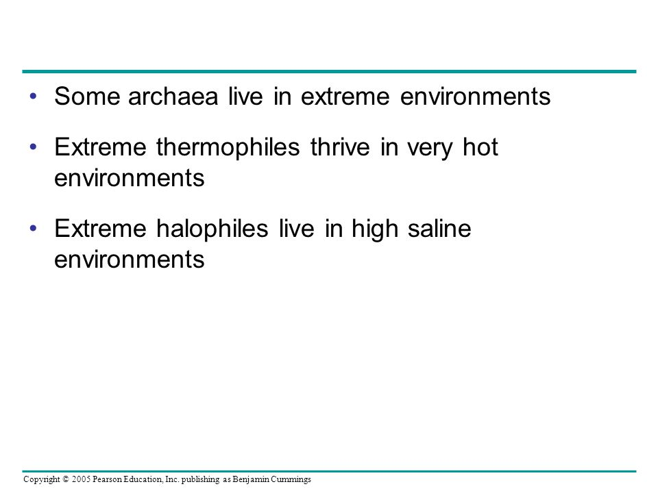Some archaea live in extreme environments Extreme thermophiles thrive in very hot environments Extreme halophiles live in high saline environments