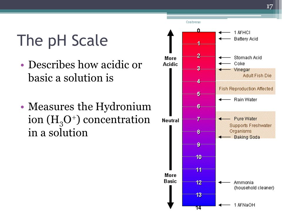 The pH Scale Describes how acidic or basic a solution is Measures the Hydronium ion (H 3 O + ) concentration in a solution Contreras 17
