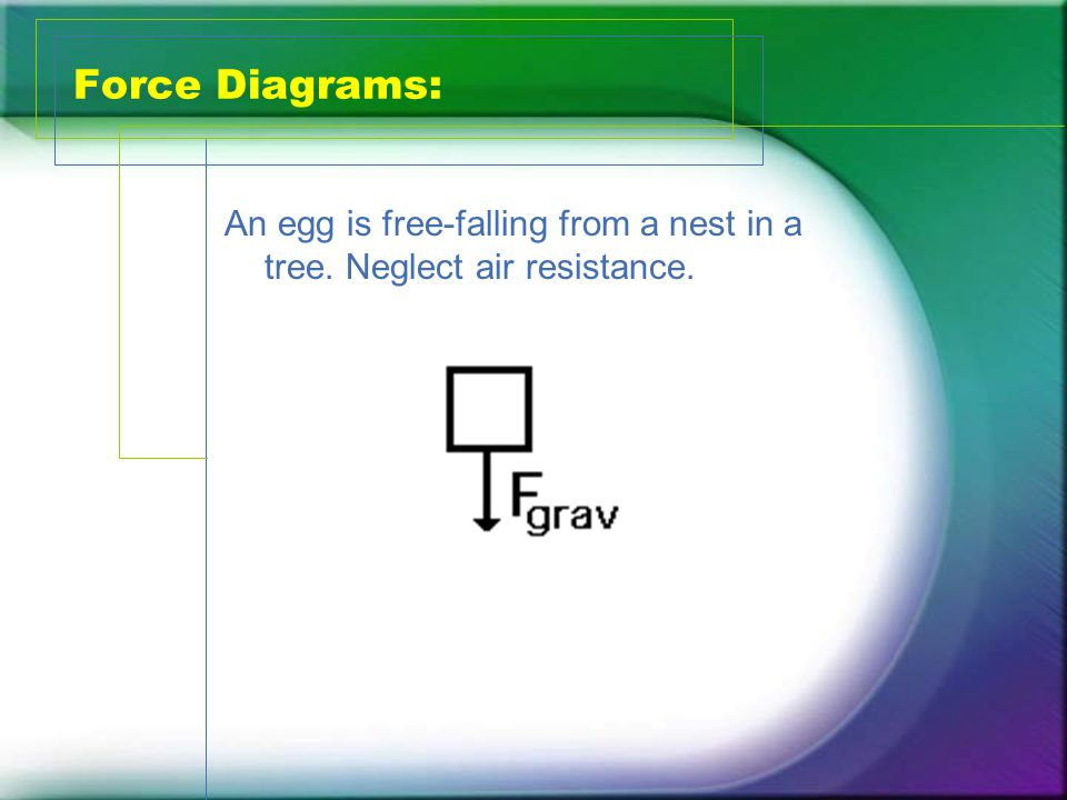 Force Diagrams: An egg is free-falling from a nest in a tree. Neglect air resistance.