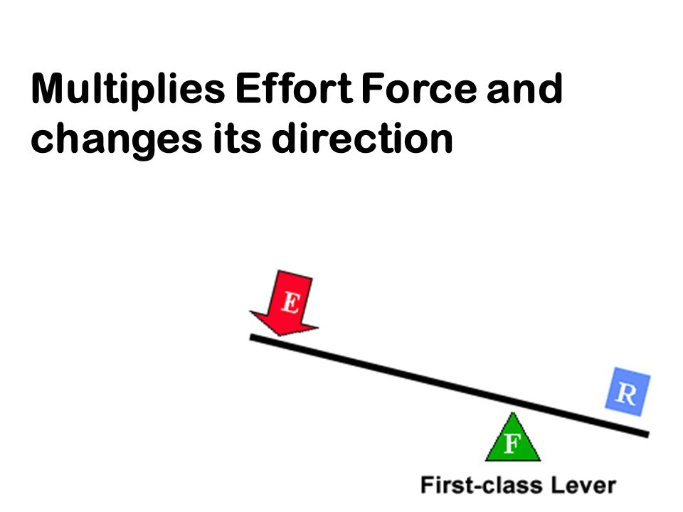 Multiplies Effort Force and changes its direction