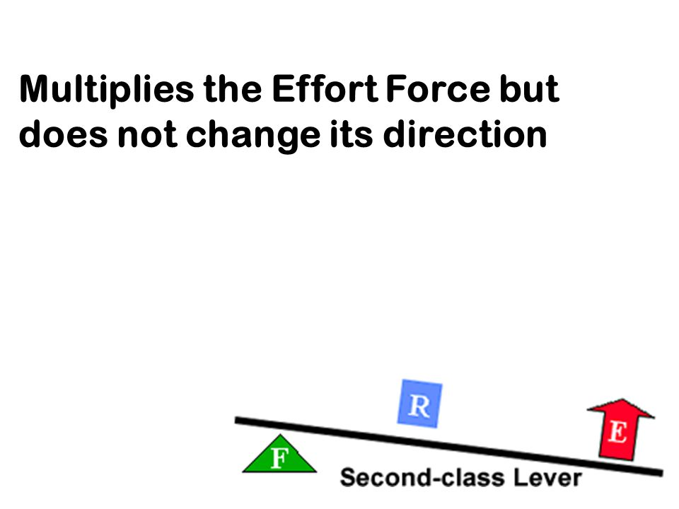 Multiplies the Effort Force but does not change its direction