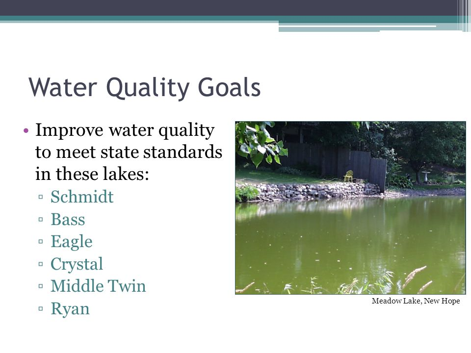 Water Quality Goals Improve water quality to meet state standards in these lakes: ▫Schmidt ▫Bass ▫Eagle ▫Crystal ▫Middle Twin ▫Ryan Meadow Lake, New Hope