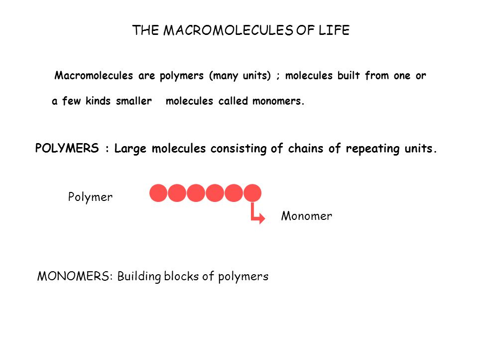 THE MACROMOLECULES OF LIFE Macromolecules are polymers (many units) ; molecules built from one or a few kinds smaller molecules called monomers.