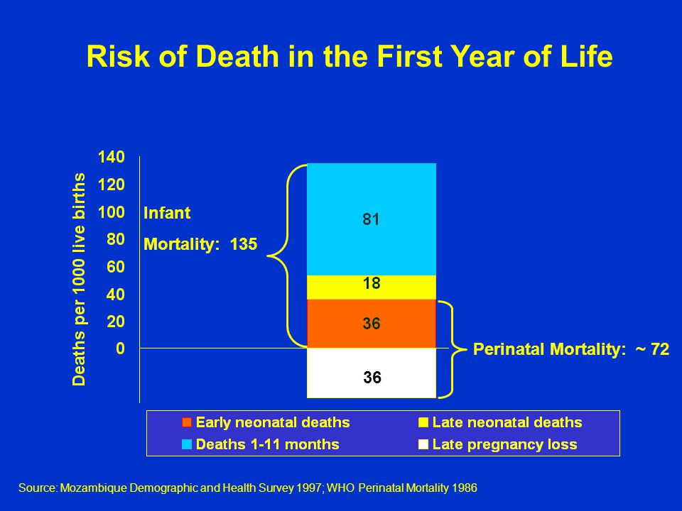 Risk of Death in the First Year of Life Perinatal Mortality: ~ 72 Infant Mortality: Source: Mozambique Demographic and Health Survey 1997; WHO Perinatal Mortality 1986