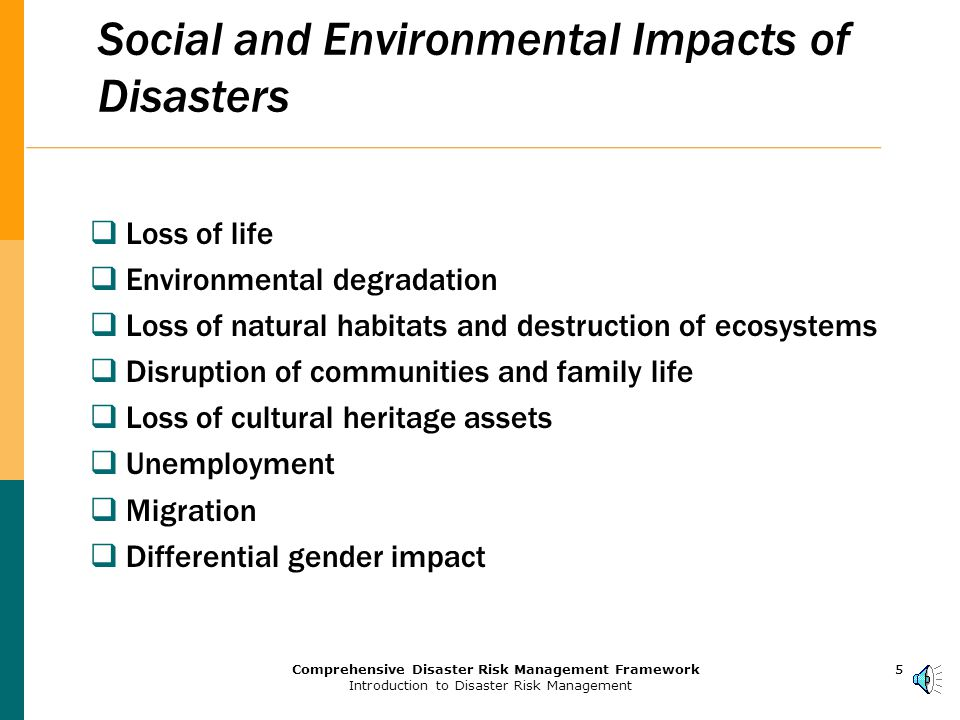 4Comprehensive Disaster Risk Management Framework Introduction to Disaster Risk Management 4 Disasters Cause Loss of Development Gains and Wealth  Annual GDP losses = 2-15%  Average yearly losses due to disasters during 1990s = US$63 billion  Annual losses of infrastructure during the 1990s due to disasters in Asia alone were about $12 billion about 2/3 total annual lending of the World Bank