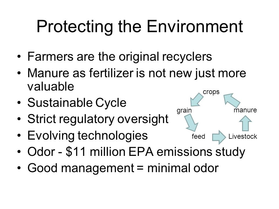 Protecting the Environment Farmers are the original recyclers Manure as fertilizer is not new just more valuable Sustainable Cycle Strict regulatory oversight Evolving technologies Odor - $11 million EPA emissions study Good management = minimal odor crops feed grain Livestock manure