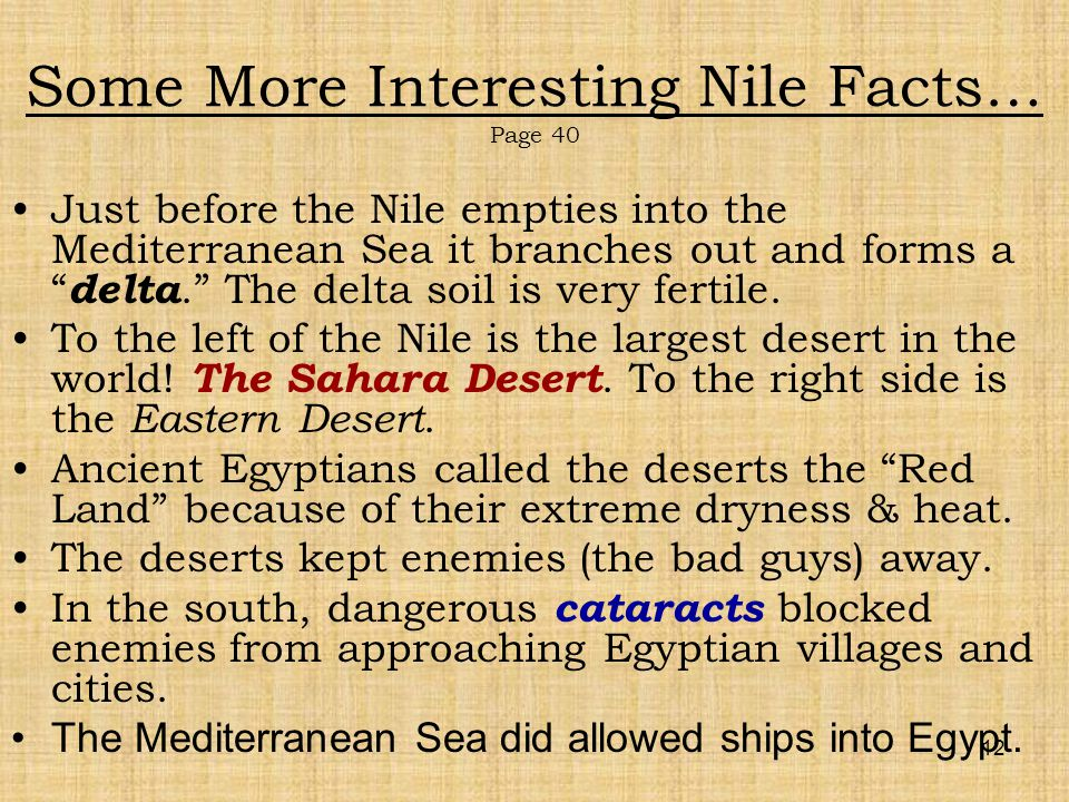 interesting facts about the nile river valley