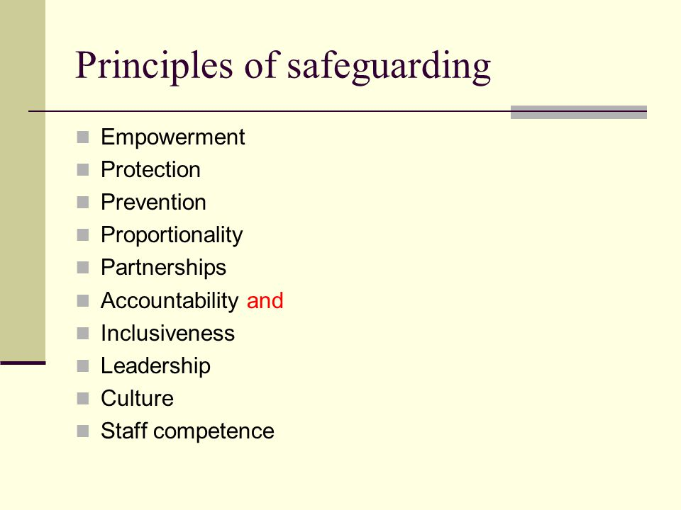 Principles of safeguarding Empowerment Protection Prevention Proportionality Partnerships Accountability and Inclusiveness Leadership Culture Staff competence