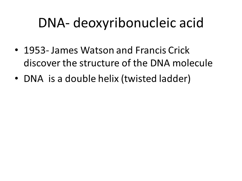 DNA- deoxyribonucleic acid James Watson and Francis Crick discover the structure of the DNA molecule DNA is a double helix (twisted ladder)