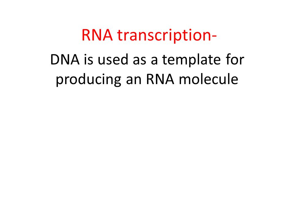 RNA transcription- DNA is used as a template for producing an RNA molecule