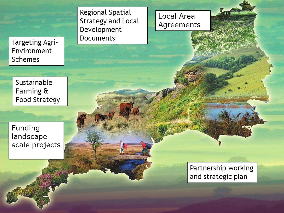 Regional Spatial Strategy and Local Development Documents Targeting Agri- Environment Schemes Sustainable Farming & Food Strategy Funding landscape scale projects Local Area Agreements Partnership working and strategic plan
