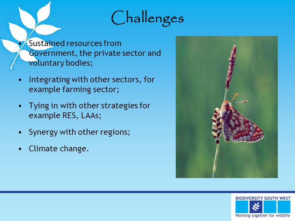 Challenges Sustained resources from Government, the private sector and voluntary bodies; Integrating with other sectors, for example farming sector; Tying in with other strategies for example RES, LAAs; Synergy with other regions; Climate change.