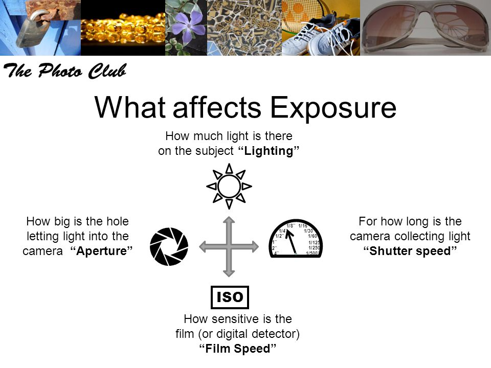 What affects Exposure How sensitive is the film (or digital detector) Film Speed How much light is there on the subject Lighting How big is the hole letting light into the camera Aperture For how long is the camera collecting light Shutter speed /2 1/250 1/125 1/60 1/30 1/16 1/8 1/4 1/500 ISO