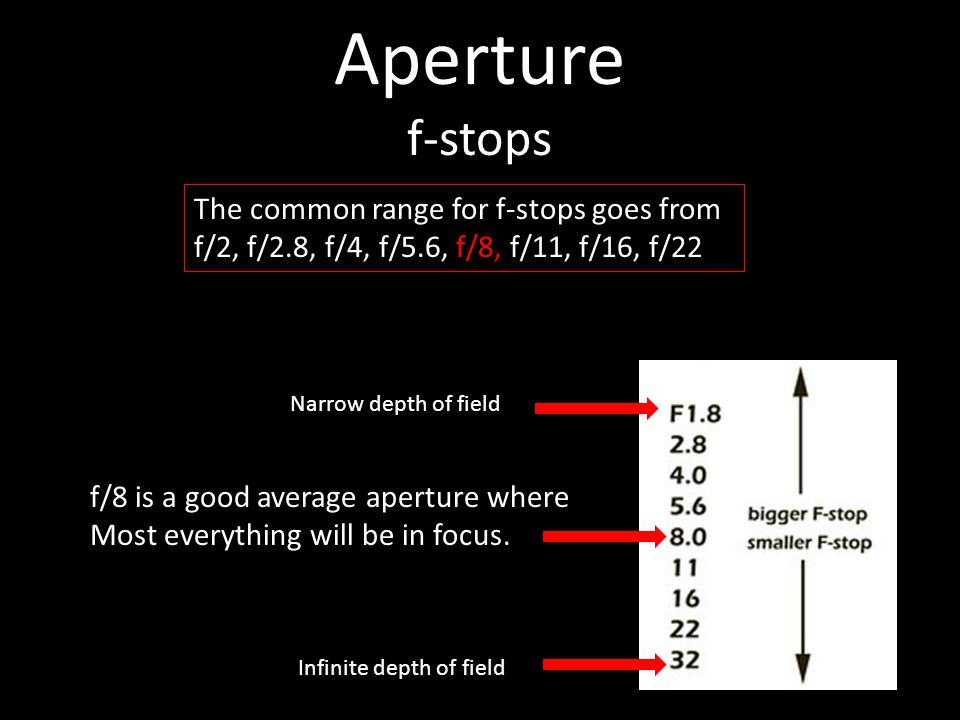 Aperture f-stops The common range for f-stops goes from f/2, f/2.8, f/4, f/5.6, f/8, f/11, f/16, f/22 f/8 is a good average aperture where Most everything will be in focus.