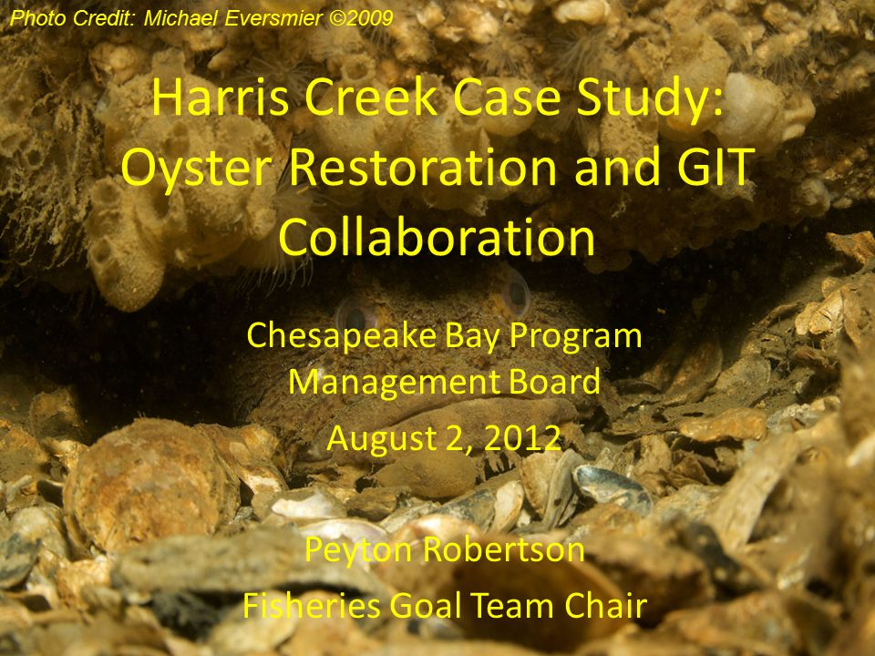 Harris Creek Case Study: Oyster Restoration and GIT Collaboration Chesapeake Bay Program Management Board August 2, 2012 Peyton Robertson Fisheries Goal Team Chair Photo Credit: Michael Eversmier ©2009