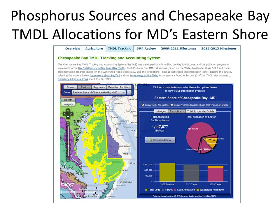 Phosphorus Sources and Chesapeake Bay TMDL Allocations for MD's Eastern Shore