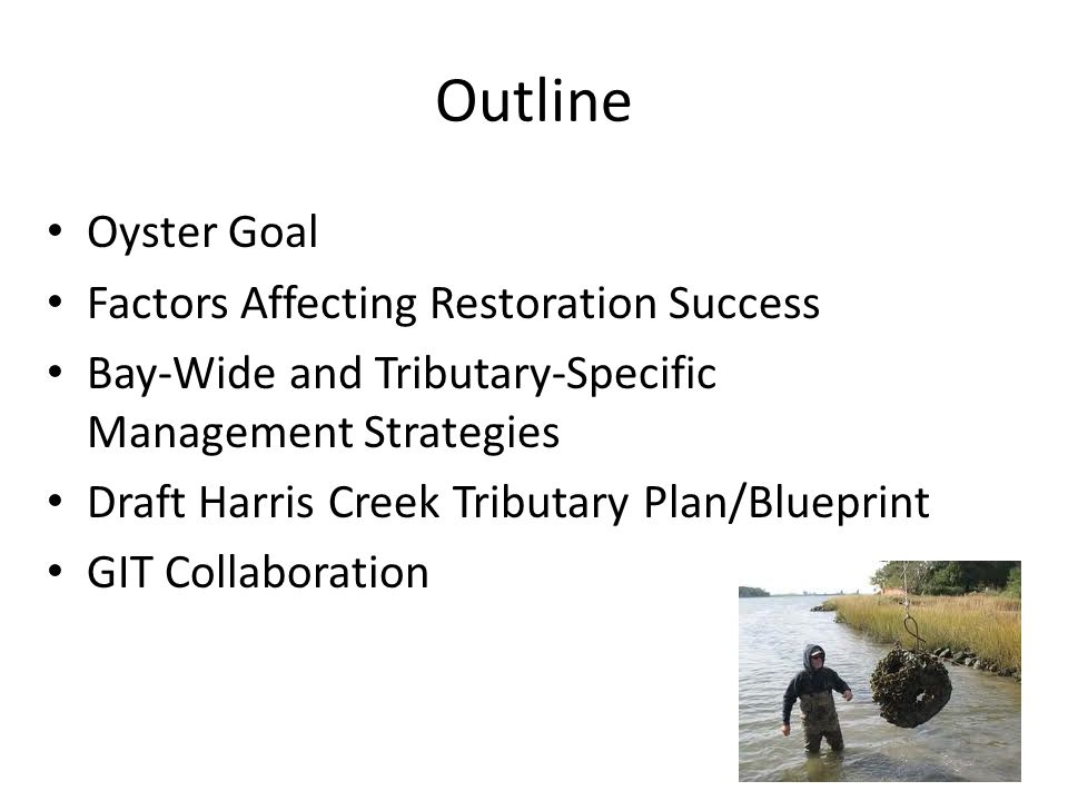 Outline Oyster Goal Factors Affecting Restoration Success Bay-Wide and Tributary-Specific Management Strategies Draft Harris Creek Tributary Plan/Blueprint GIT Collaboration
