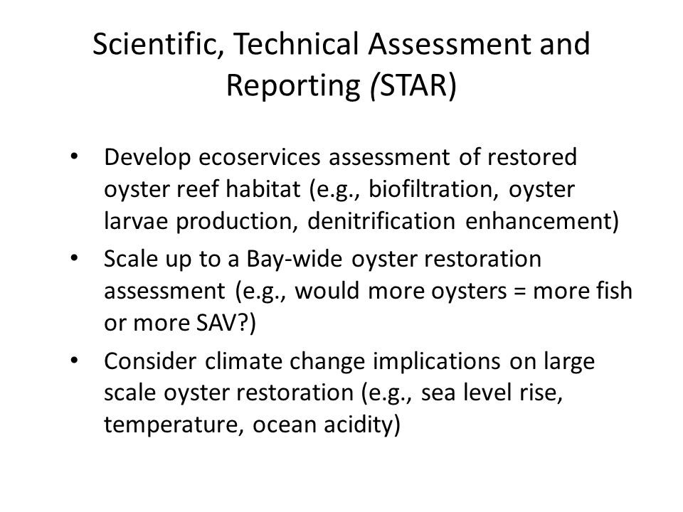 Scientific, Technical Assessment and Reporting (STAR) Develop ecoservices assessment of restored oyster reef habitat (e.g., biofiltration, oyster larvae production, denitrification enhancement) Scale up to a Bay-wide oyster restoration assessment (e.g., would more oysters = more fish or more SAV ) Consider climate change implications on large scale oyster restoration (e.g., sea level rise, temperature, ocean acidity)