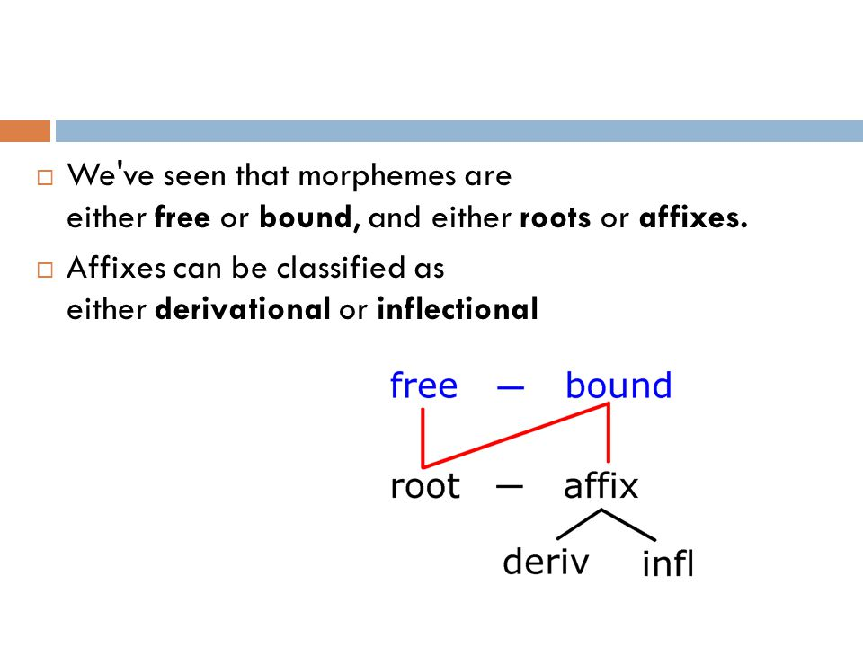  We ve seen that morphemes are either free or bound, and either roots or affixes.