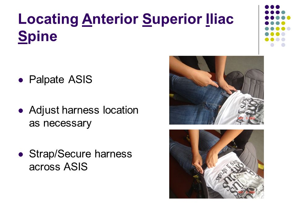 Locating Anterior Superior Iliac Spine Palpate ASIS Adjust harness location as necessary Strap/Secure harness across ASIS
